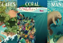 Exposición virtual: Turismo y Biodiversidad Coste