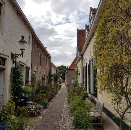 Variedad de flores en Holanda.